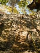 Rock Climbing Photo: Golden Escalator (11a; Central Bubba, NRG)