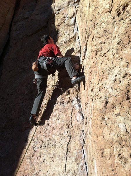 "Rock Climbing Photo: Starting ""LaCholla Jackson""."