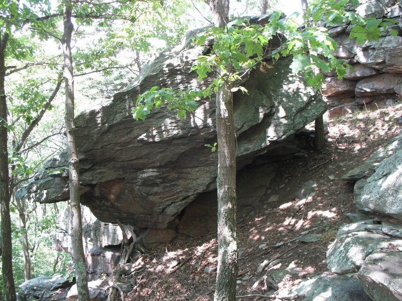 When you see this boulder from the trail you know Skink Rock is near. It is hidden behind the boulder and downhill 30 feet.
