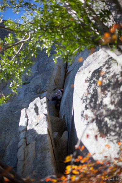 Rock Climbing Photo: Eric Reed on p1 of Gripper. Photo taken by Chris T...