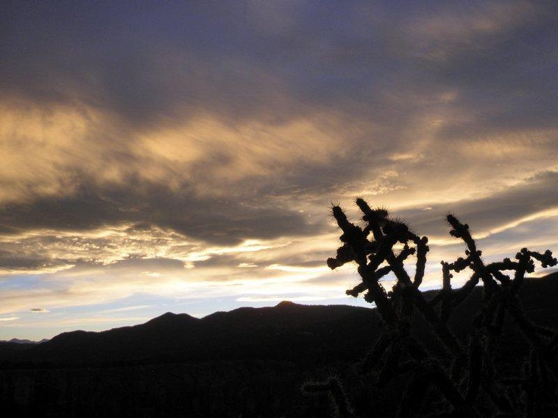 Rock Climbing Photo: Cactus Cliff sunset.