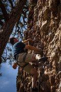 "Rock Climbing Photo: ""Cobble Wobble""."