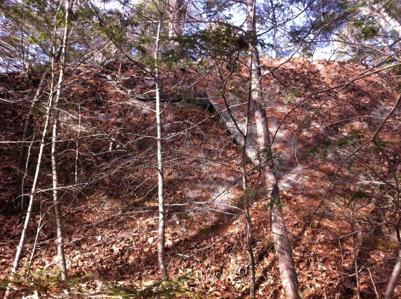 Rock Climbing Photo: North Slab needs a little gardening.