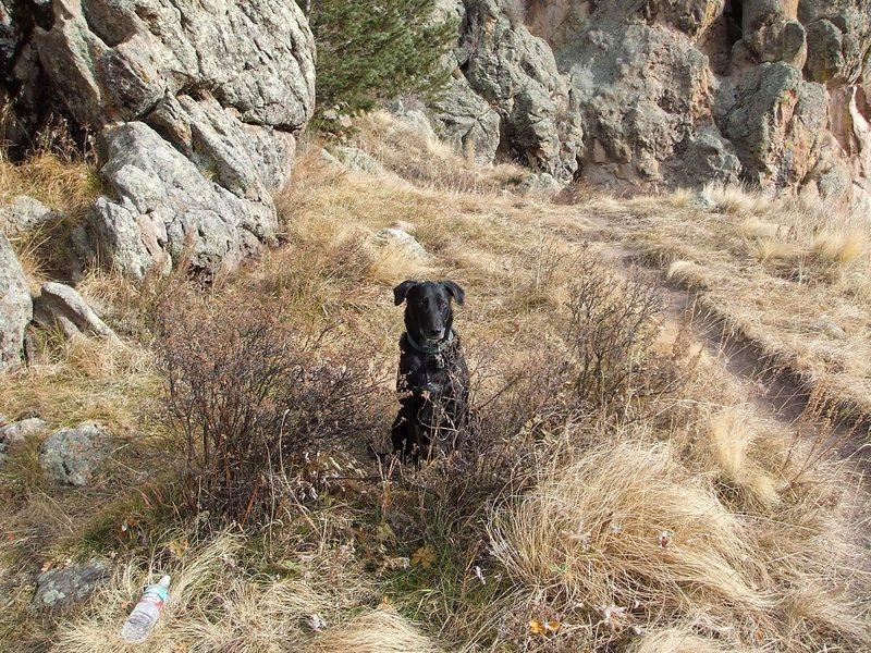 Rock Climbing Photo: Zackie Boy at Las Conchas.