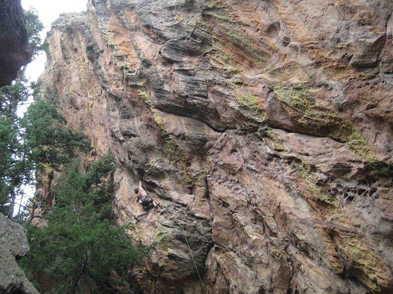 Rock Climbing Photo: T-Shred, many feet left to climb....