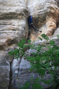 Rock Climbing Photo: Taylor making the crux moves on Urushiol Direct