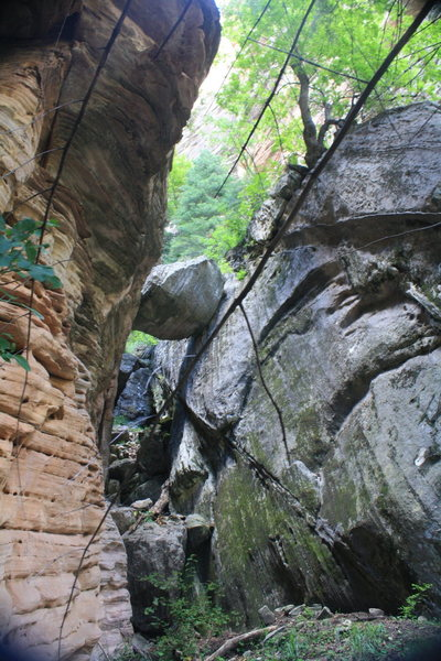 Rock Climbing Photo: The Chock Stone. To the left is Urushiol to the ri...