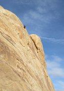 Rock Climbing Photo: Andy near top of P2