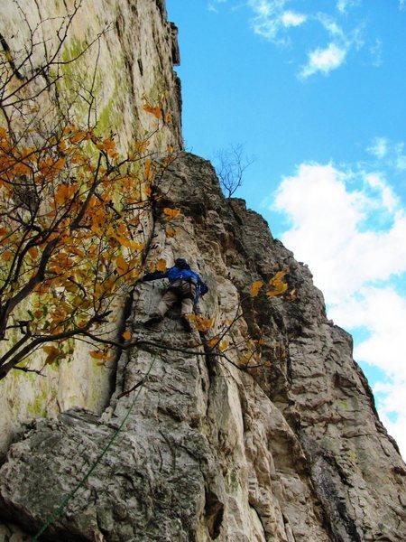 Rock Climbing Photo: Green wall, Seneca, WV