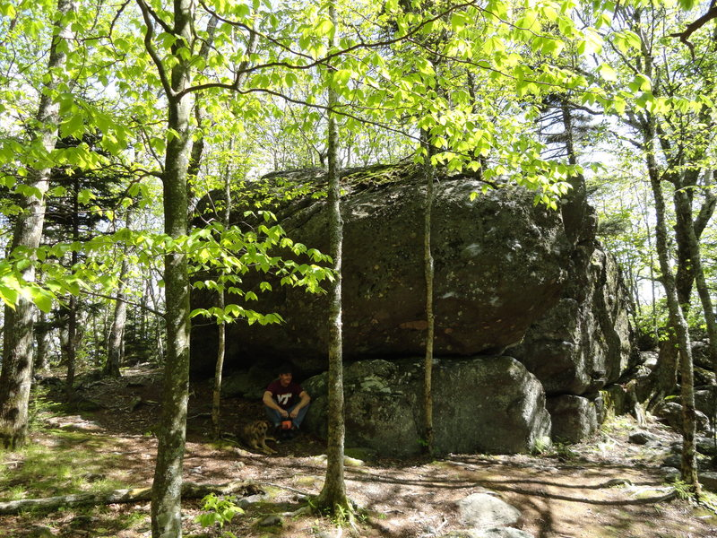Lazy day of bouldering in Grayson Highlands with Layla