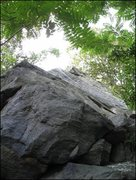 Rock Climbing Photo: Looking up at the Chestnut Arete