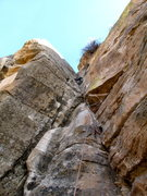 "Rock Climbing Photo: ""I Need a Shower."""