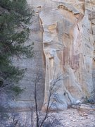 Rock Climbing Photo: This block has lots of possibilities.