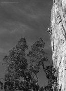 Rock Climbing Photo: Strolling down Lime Street.