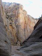 Rock Climbing Photo: Soooo much potential