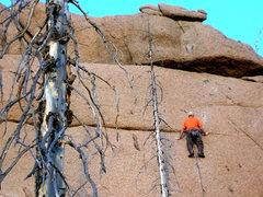 "Rock Climbing Photo: ""Ladder Made Of Thorns""."