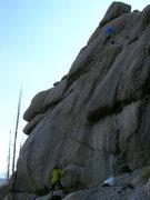 "Rock Climbing Photo: ""Black Rose Stem""."