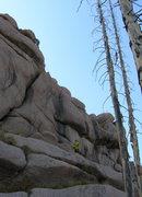 "Rock Climbing Photo: Nearing the anchors of ""Black Rose Stem""..."
