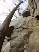 Rock Climbing Photo: Goodbye girl