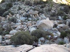 Rock Climbing Photo: Leap Year Flake