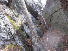 Rock Climbing Photo: Bradley White route beginning line is yellow. The ...