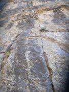 Rock Climbing Photo: Black Canyon Great White Wall