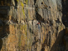 Rock Climbing Photo: Apes.