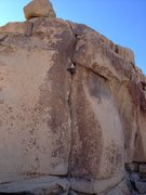 Rock Climbing Photo: Mike Holley pulling the upper section of Touch and...