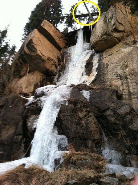 Rock Climbing Photo: Hidden Falls death tree.