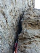 Rock Climbing Photo: This thing eats gear.  Greenwall 5.7