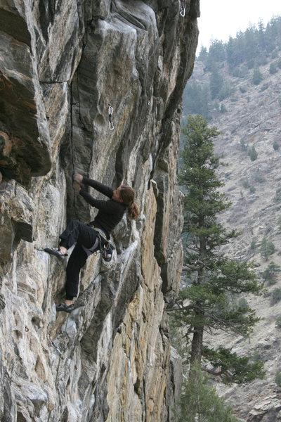 Rock Climbing Photo: Leading Power Trip, Anarchy
