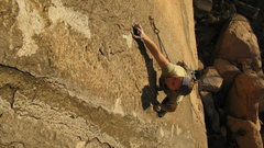 Rock Climbing Photo: Crux of No Pressure. Hard. Belayed long hours in t...