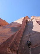 Photo by Davy Josephson <br /> <br />Tequila Sunrise (5.10d) Maverick Buttress - Long Canyon - Moab, UT.