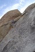 Rock Climbing Photo: Dave Rockwell on Ranger Danger