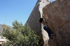 Rock Climbing Photo: Flight Attendant (V4), Joshua Tree NP