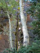 Rock Climbing Photo: Fun crack for an easy grade