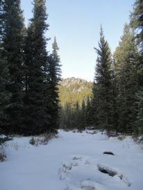 Frozen South Fork