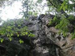 Rock Climbing Photo: Can't remember the route