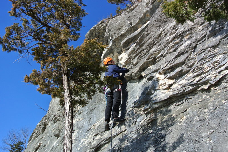 Rock Climbing Photo: Frisbie working up the route.
