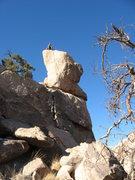 Rock Climbing Photo: Fishklr on Laurel's Nose. Incredible Shrinking Nos...