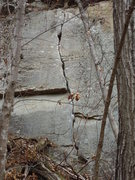 Rock Climbing Photo: Guzzler Eat your heart out! Super fun crack! Multi...