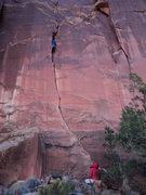 Rock Climbing Photo: Hoody negotiates the crux slot.