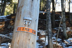 Rock Climbing Photo: Pole #37 which marks the entrance to the blackjack...