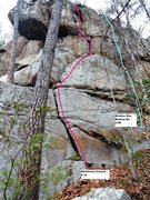 Rock Climbing Photo: Rainforest Crunch