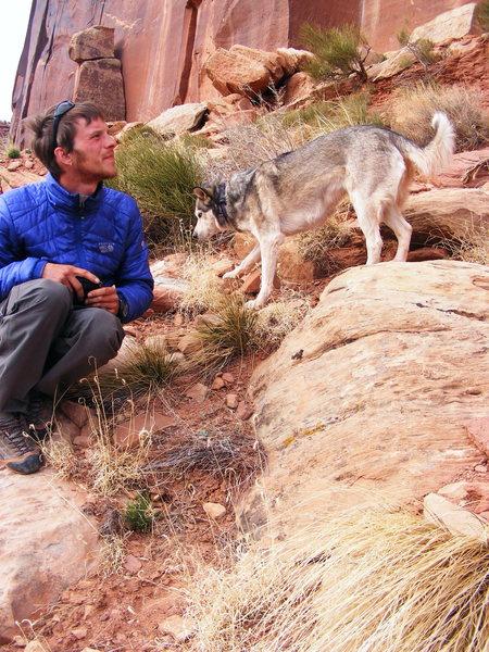 not mine, but meet riley the climbing husky! Best dog ever!