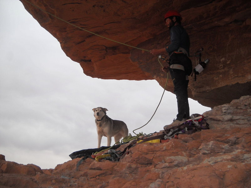 The husky and owner belaying on Mexican Hat!