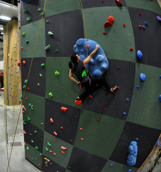 Rock Climbing Photo: Speed Wall