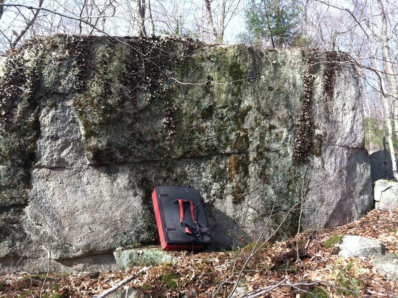 Rock Climbing Photo: The Discovery Boulder before being cleaned.