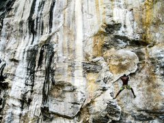 "Rock Climbing Photo: Hakuna matata mode on ""Lion King"" (5.11b..."