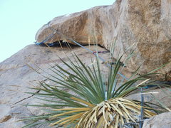 Rock Climbing Photo: The last pitch
